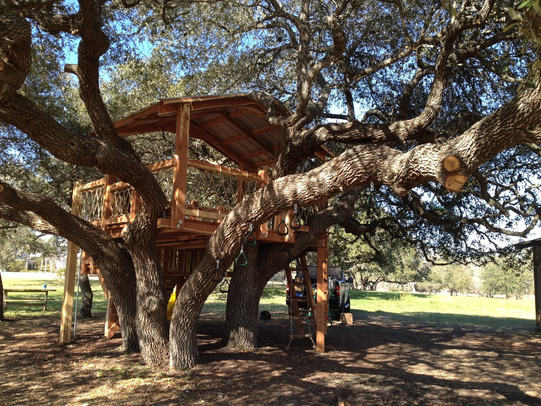 Eastern Red Cedar Treehouse In Round Top, Texas