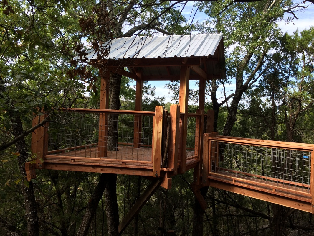 Eastern Red Cedar Treehouse with 18' Bridge and Metal Roof.